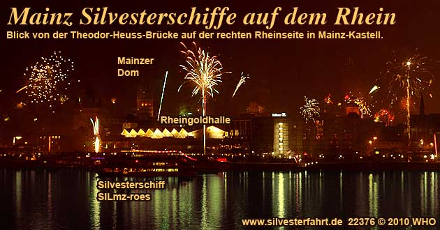 silvester single party 2021 mainz